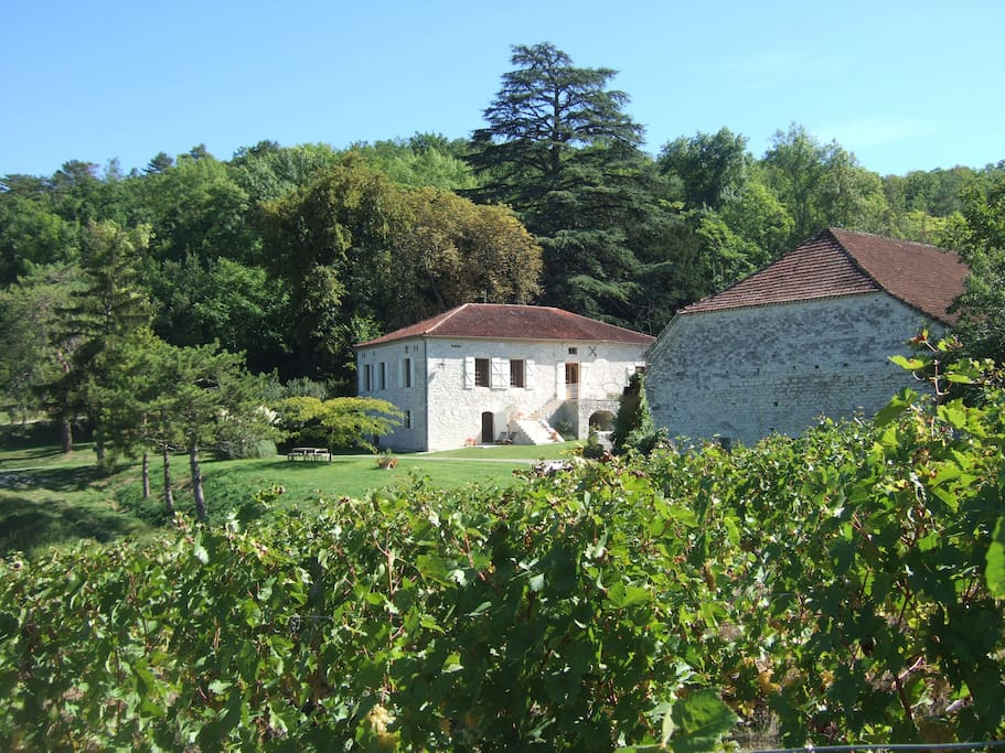 Overview of Lamoulere from the vines