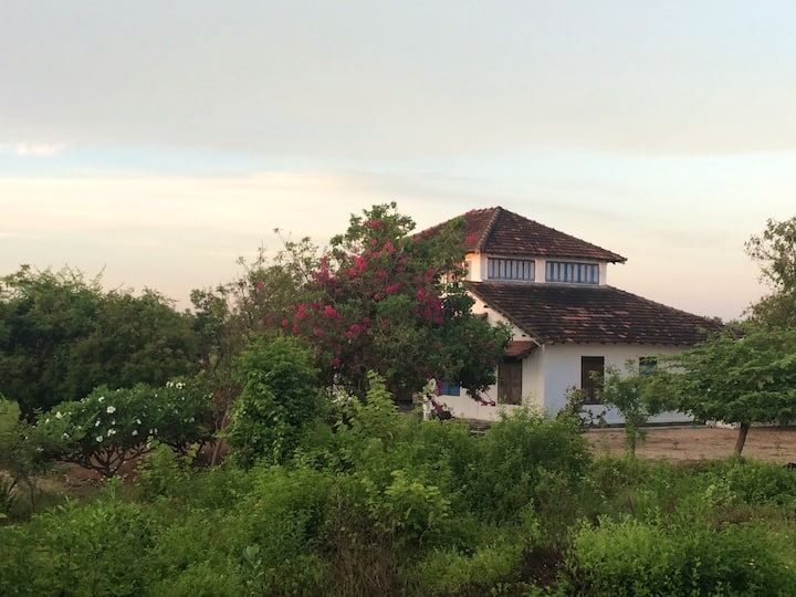 Kalahj Villa, Arugambay