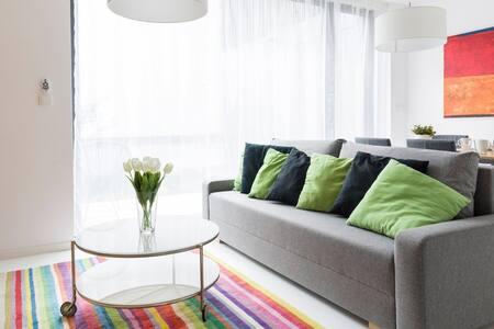 Design Apartment 01 Baron Sušice