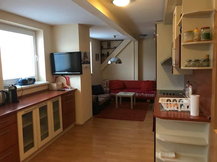 Veľký mezonetový rodinný apartmán na Donovaloch