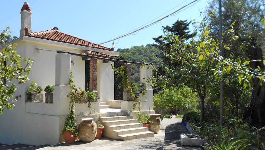 Dimitra's Cottage House - Skopelos - Ev