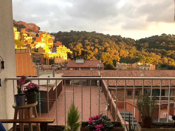 Share a cozy & bright flat in front Park Güell