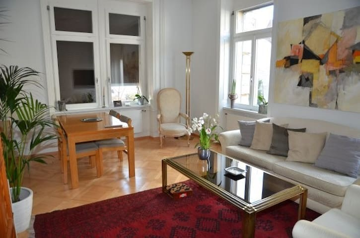 Spacious 3-room apartment close to the Rhine/1236