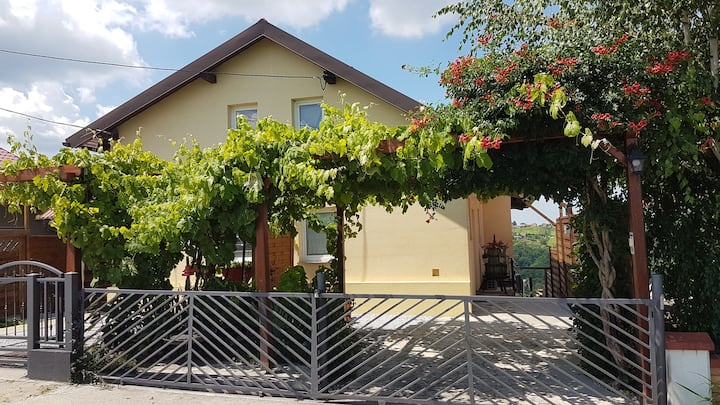 Vineyard Studio Apartment***atemberaubende Ausicht