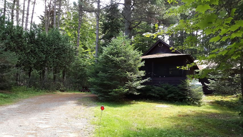 Authentic 1920 Adirondack Cabin - Lake Clear - กระท่อม