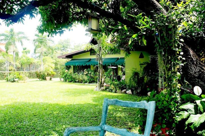 Jamaican Garden Cozy self-contained Studio