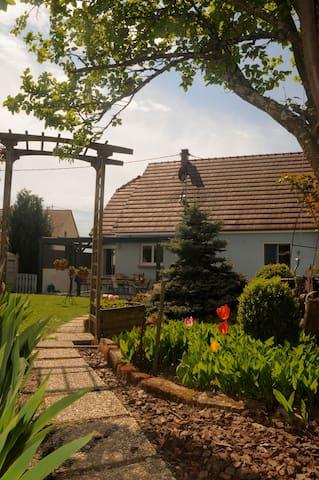 Meublé classé 3 étoiles en l'Alsace  du nord