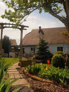 studio au coeur de l'Alsace Bossue - Struth