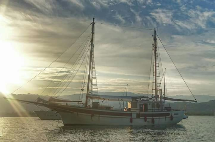 cabine dans  voilier atypique - Porto vecchio - Boat