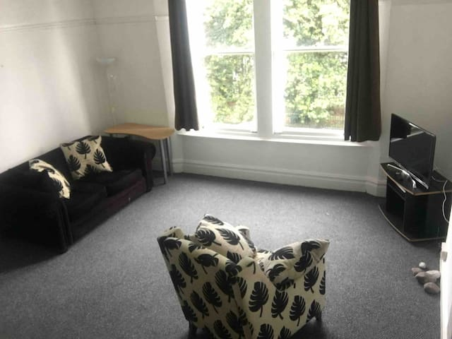 2 Bedroom spacious apartment in Uplands, Swansea