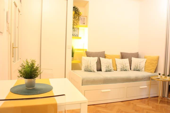 Apartment Zvonimirova Zagreb center