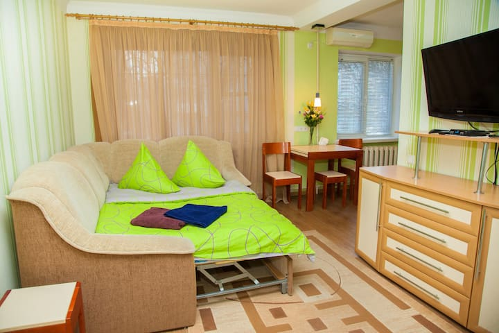 Semi-luxury Apartment on Nezalezhnoi Ukrainy 65-B