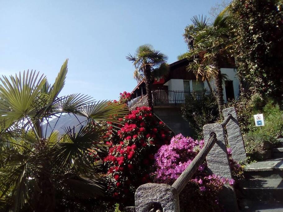 Welcome on Montecucco!
