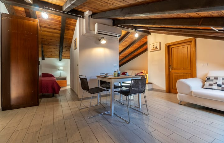 Amazing Attic Apartment in Old Town