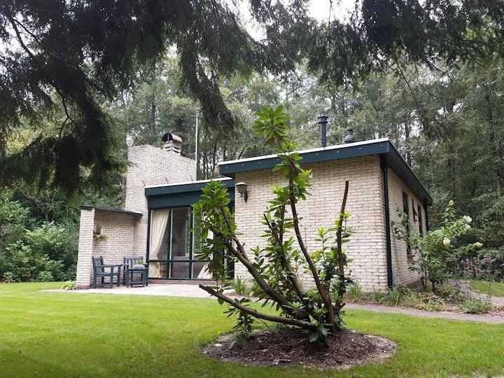 Superplek Bungalow 'Heerlijke Willem', Oude Willem