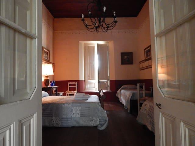 Enorme casa antigua con patio privado - General Belgrano - House