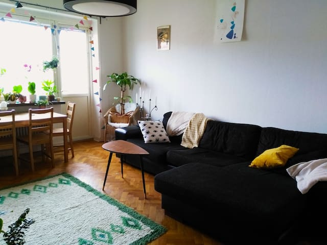 Comfy couch in the heart of Malmö - Malmö - Flat