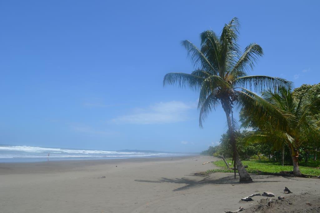The spectacular Beach - Paradise Found!