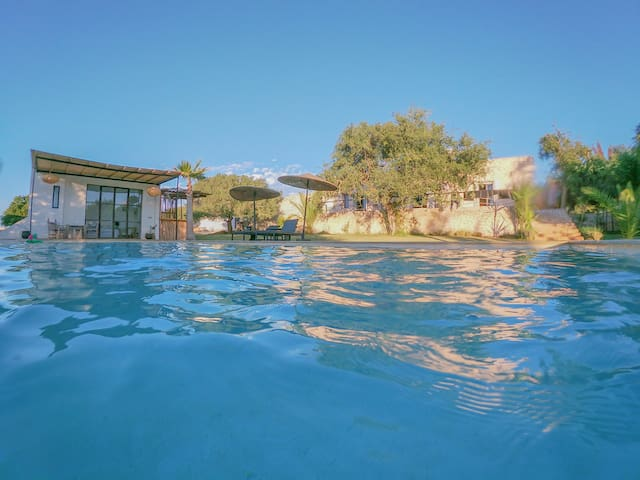 Private Lodge in spacious garden and swimming pool
