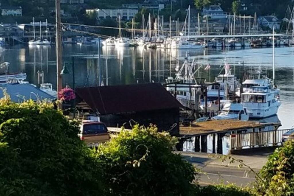 View of Working Waterfront, Fishing Fleet, and Marinas from Deck