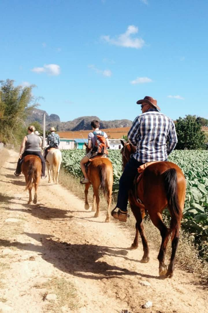 Horse ride in the Valley of Silence