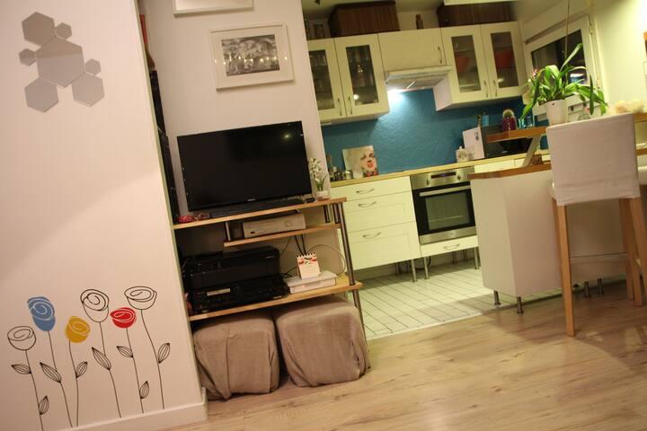 Chambre dans bel et spacieux appart (proche gare) - Cergy - Apartemen