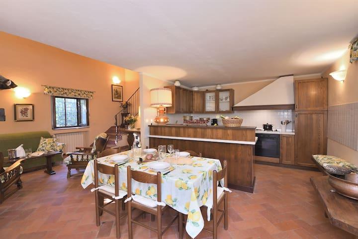 Castellare in Chianti, Maggiorana