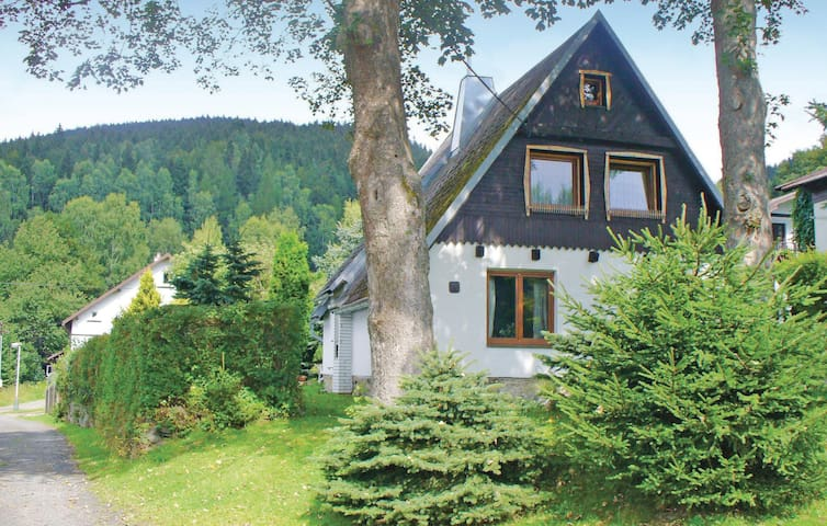 Holiday cottage with 3 bedrooms on 118 m² in Kraslice