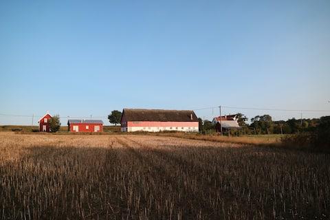 Modernt hus i öppet landskap nära Ljugarn