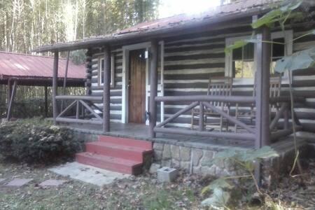 Small Cabin Near Town - Hendersonville