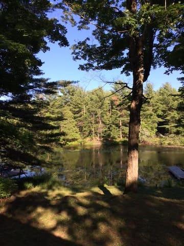 Quiet, private outdoor space