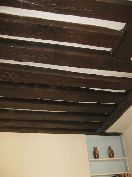 Ancient oak beams throughout aprtment