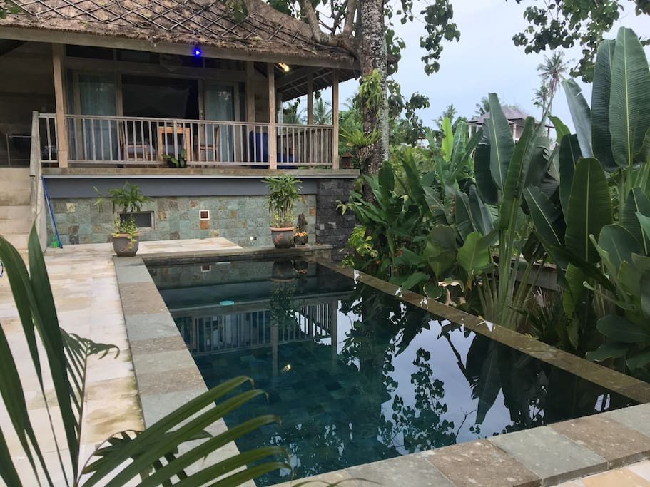 The infinity pool and deck area