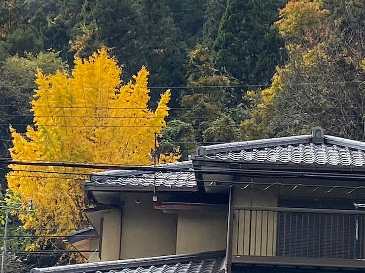 Beautiful house in 東山 Higashiyama
