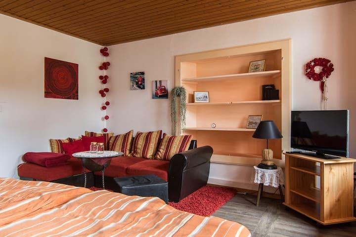 Pension Chesselberg. Zimmer PRIMULA - Buckten - Bed & Breakfast