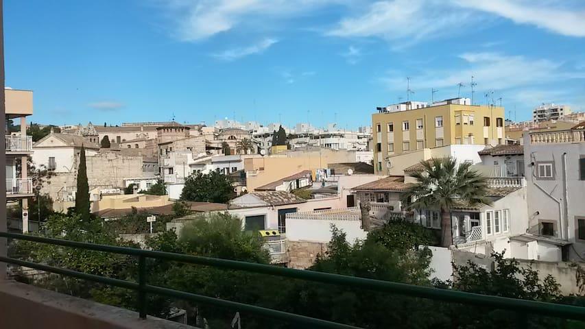 Nice flat Big Terrasse Sta Catalina - Palma - Apartemen