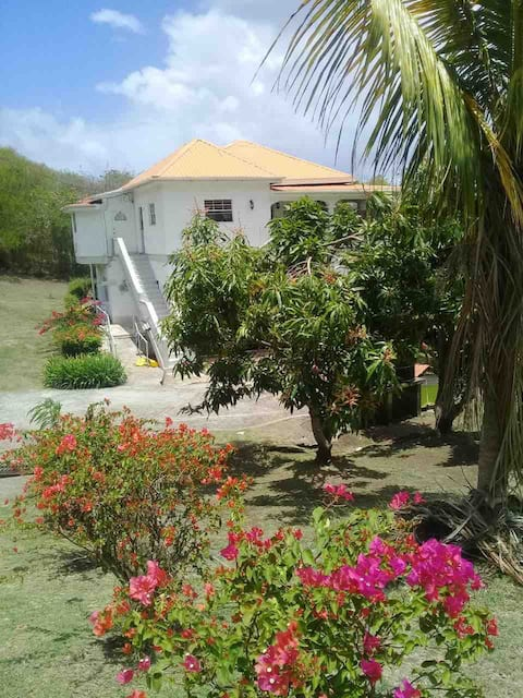 Authentic Grenadian Experience 2