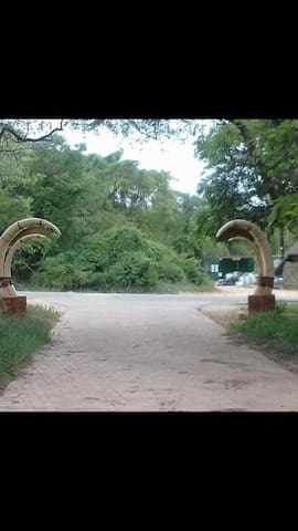 Olifant lodge - Marloth Park - Hus