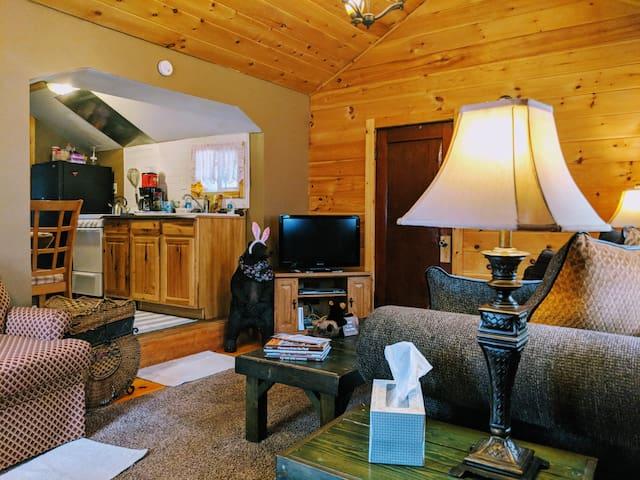 The Original Cozy Cabin on Lake Wallenpaupack