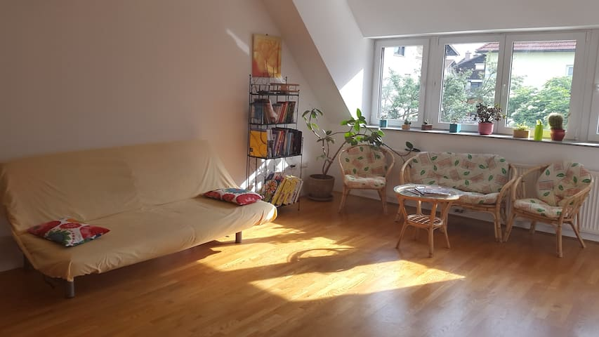 Big and cozy apartment. Ljubljana - Ljubljana - Rumah