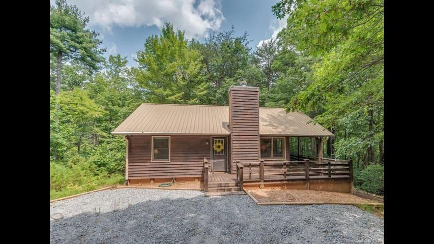 Nana's Cozy Mountain Cabin