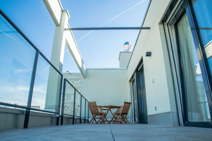 Swiss Star Rooftop Apartment