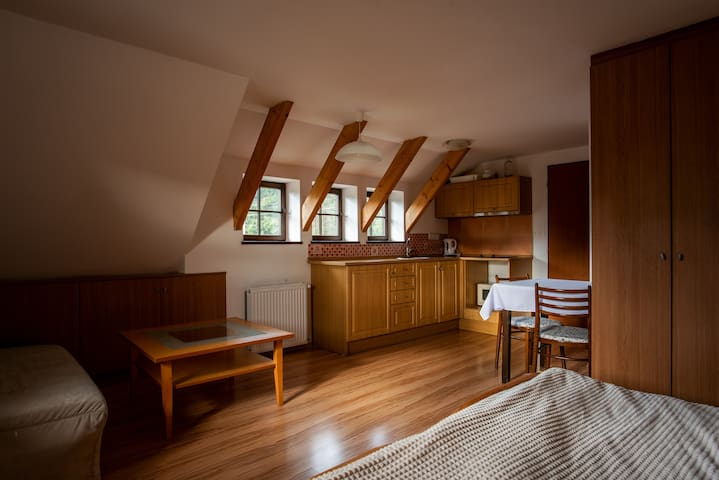 Cozy accommodation in the attic in Bedřichov