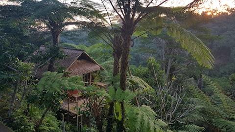 Casa de bambu com vistas incríveis da floresta.