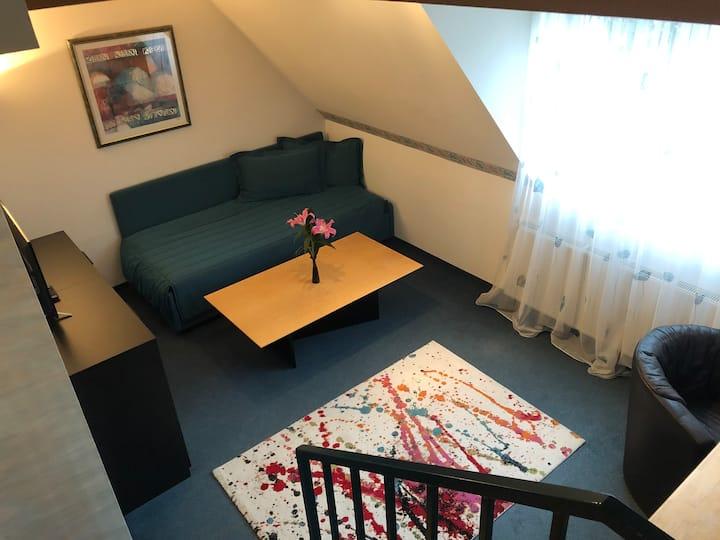 Möbliertes 49m² Studio *ideal für Geschäftsreisen*