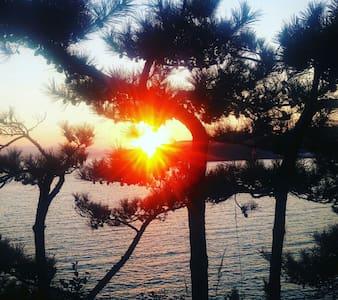 유방섬 수련원 바다의 꿈으로 가득하고 해산물이 넘치는 - Goseong-gun