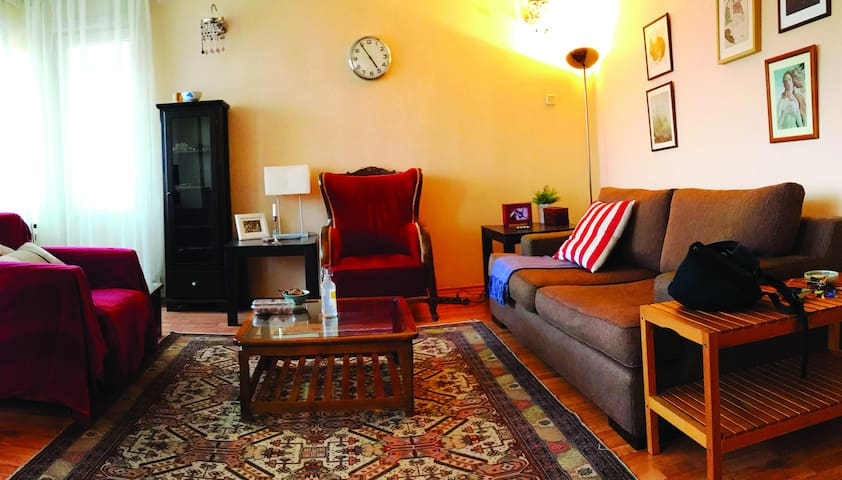 Cosy flat in the heart of Istanbul