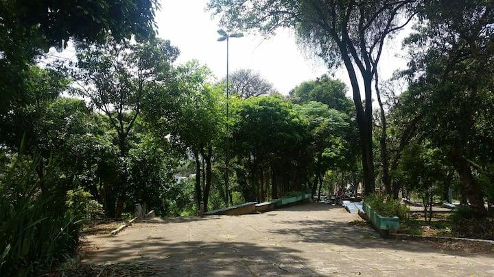 Espaço na natureza ótimo local com muitas árvores