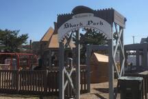 Shark Park Playground - Kids Love It!