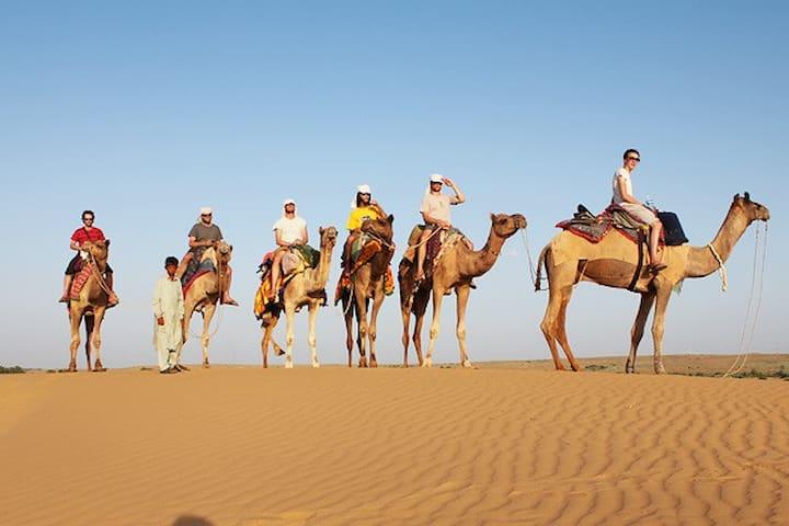 The Desert Safari Experience in Jaisalmer